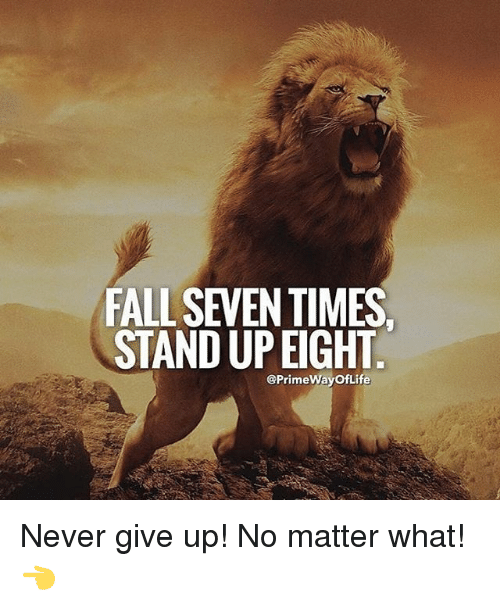 fall-seven-times-stand-up-eight-primewayoflife-never-give-up-23021950.png